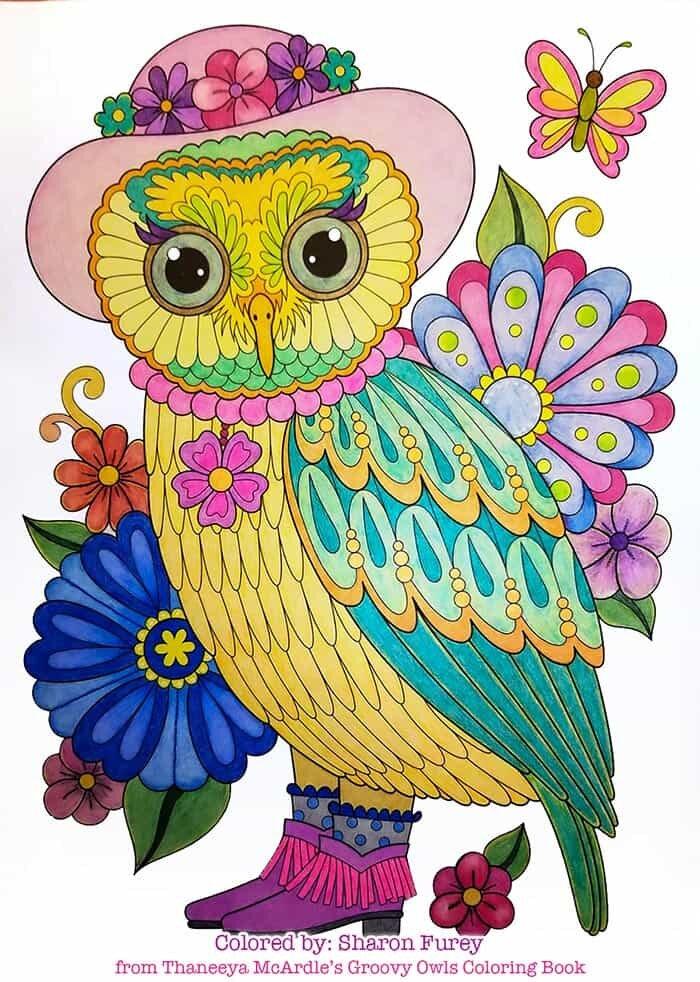 Fancy Owl Art by Thaneeya McArdle