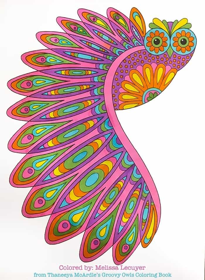 Flying Owl Art by Thaneeya