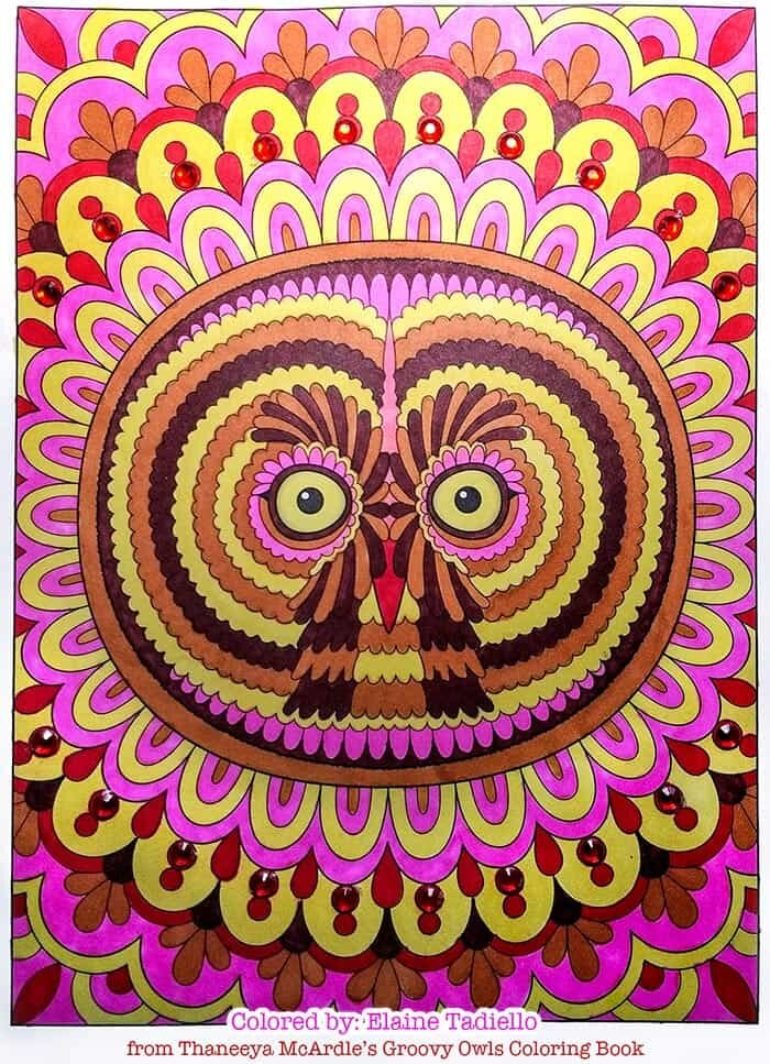 Mandala Owl Art by Thaneeya McArdle