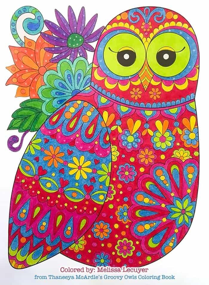 Owl Art by Thaneeya McArdle