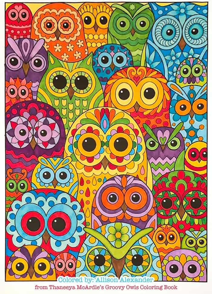 Owl Collage Art by Thaneeya McArdle