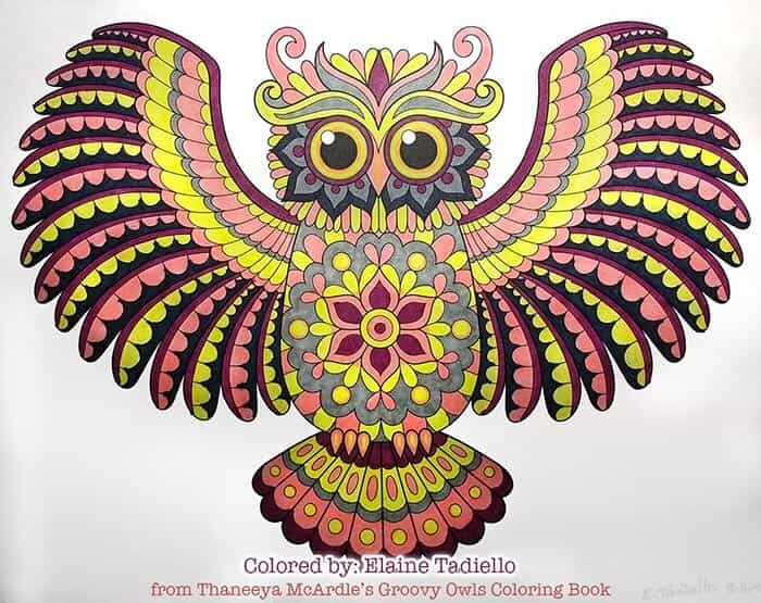 Proud Owl Art by Thaneeya McArdle