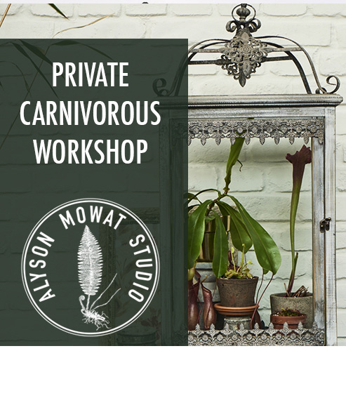 Copy of Copy of Private Carnivorous Workshop