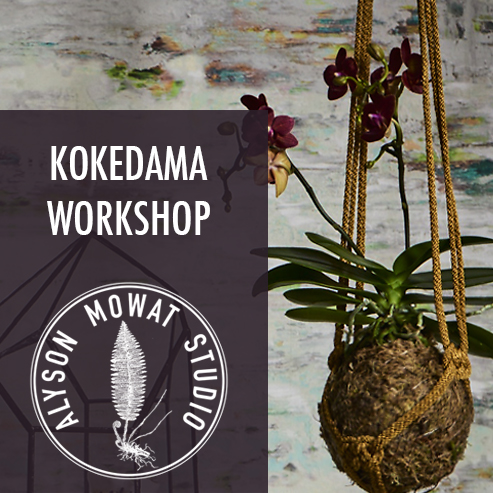 One for Group Kokedama Workshop