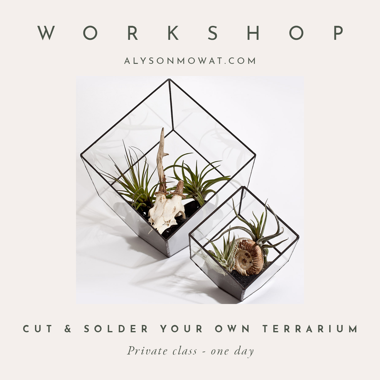 Cut & Solder Your Own Terrarium