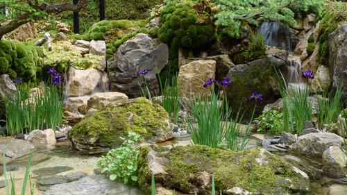 Small Garden Design Ideas From RHS Chelsea 2019 — Alyson Mowat