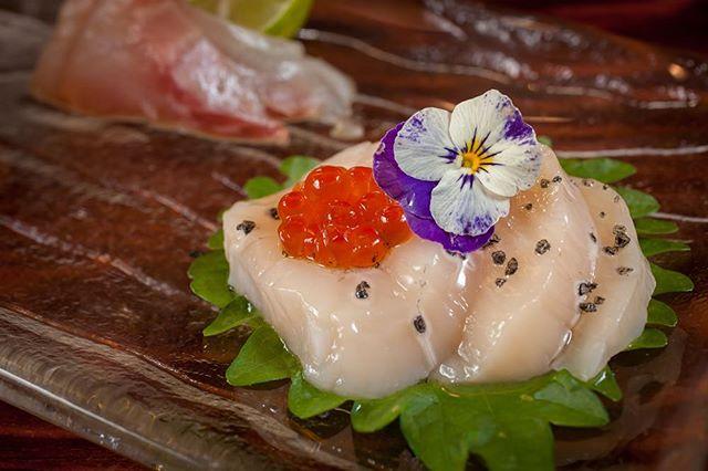 #freshscallops from Japan #tsujikifishmarket #sashimi #umisushiroseville #rosevillesushi #sushi #sacramento #roseville #foodporn #sushiporn #🍣 #nofilter