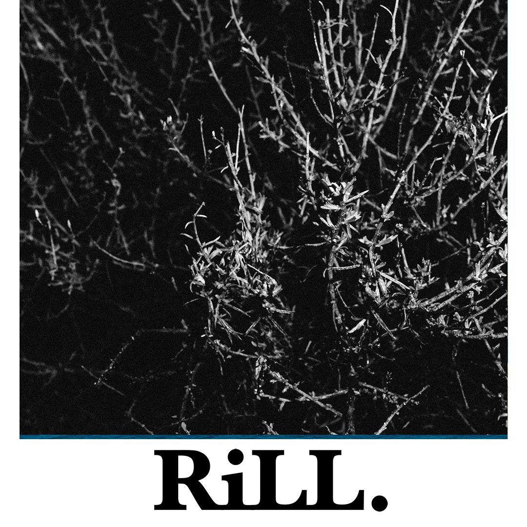RiLL LAYOUT 19.jpg