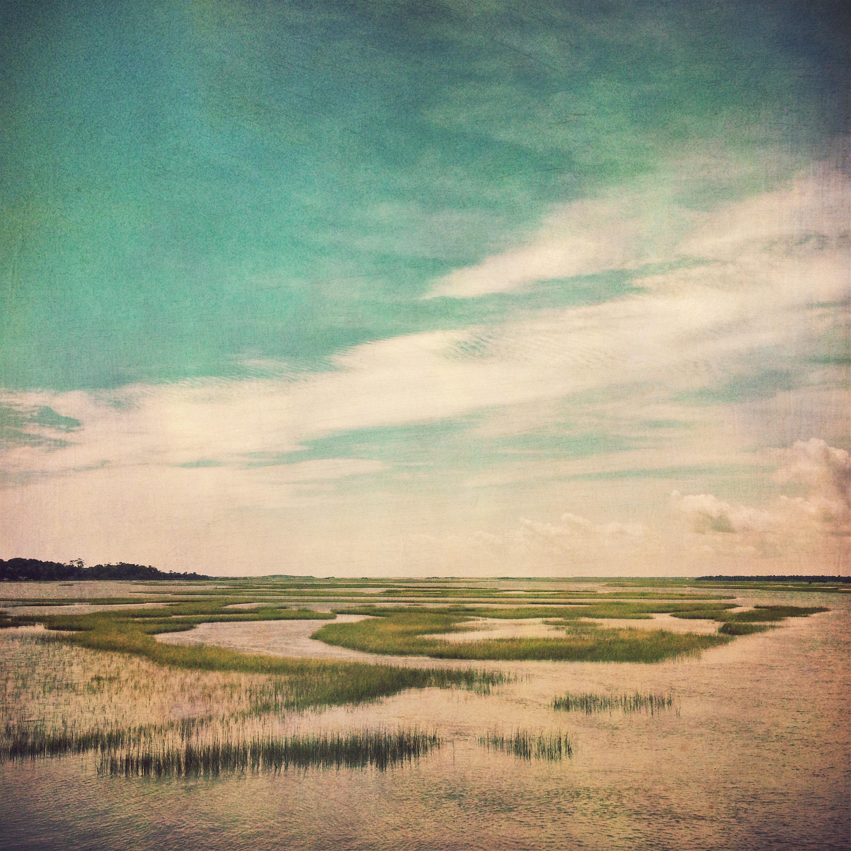 sound-grasses2.jpg