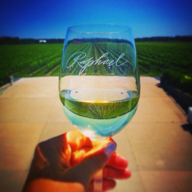 top_visits_raphael_winery.png
