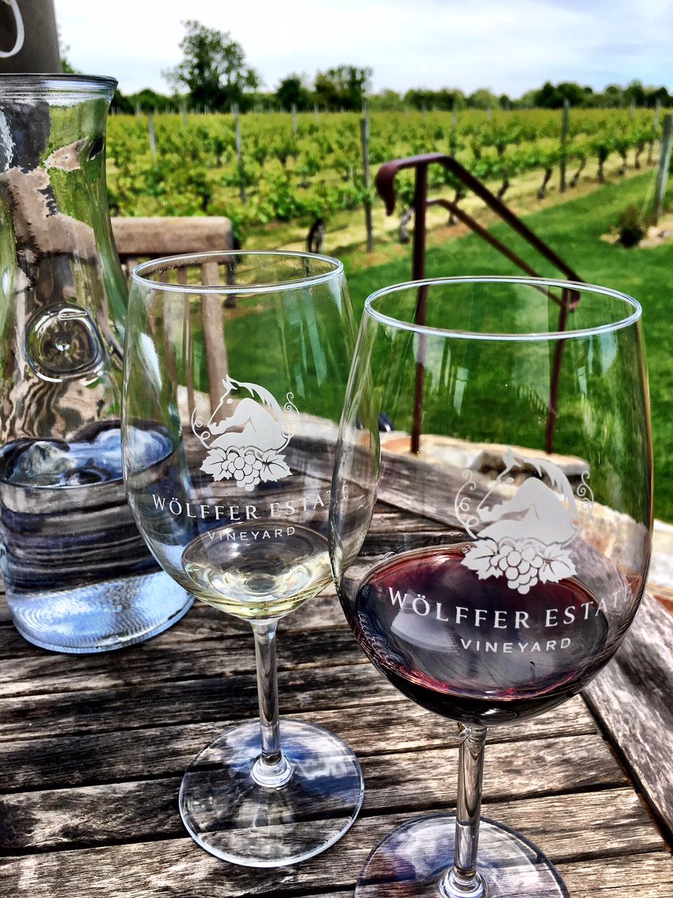 taste_of_purple_visits_wolffer_estate_wine.png