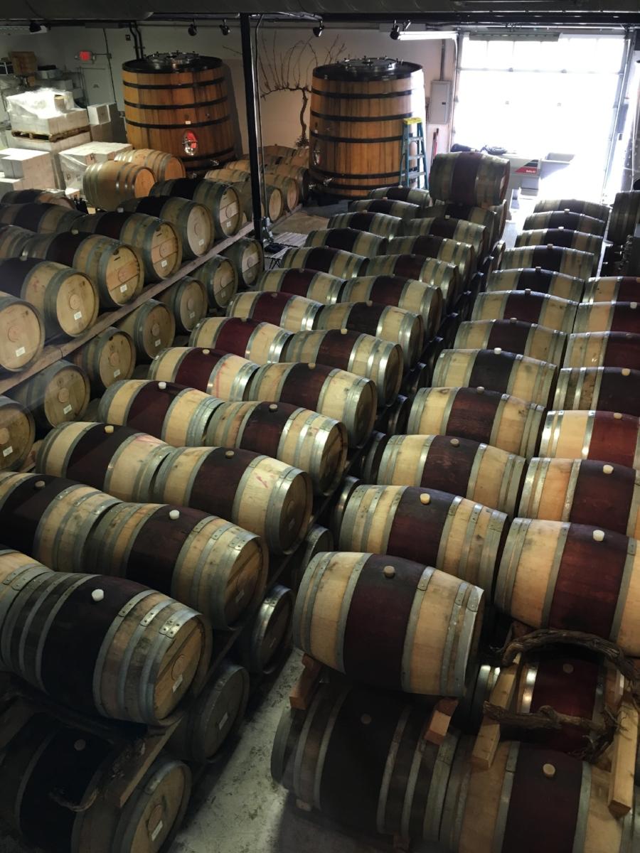 taste_of_purple_visits_bedell_cellars.png