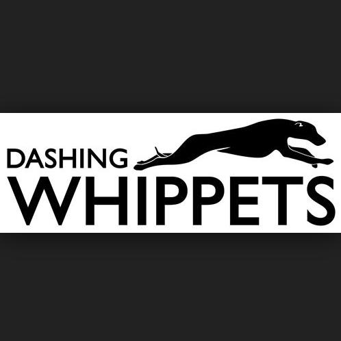 DASHING WHIPPETS