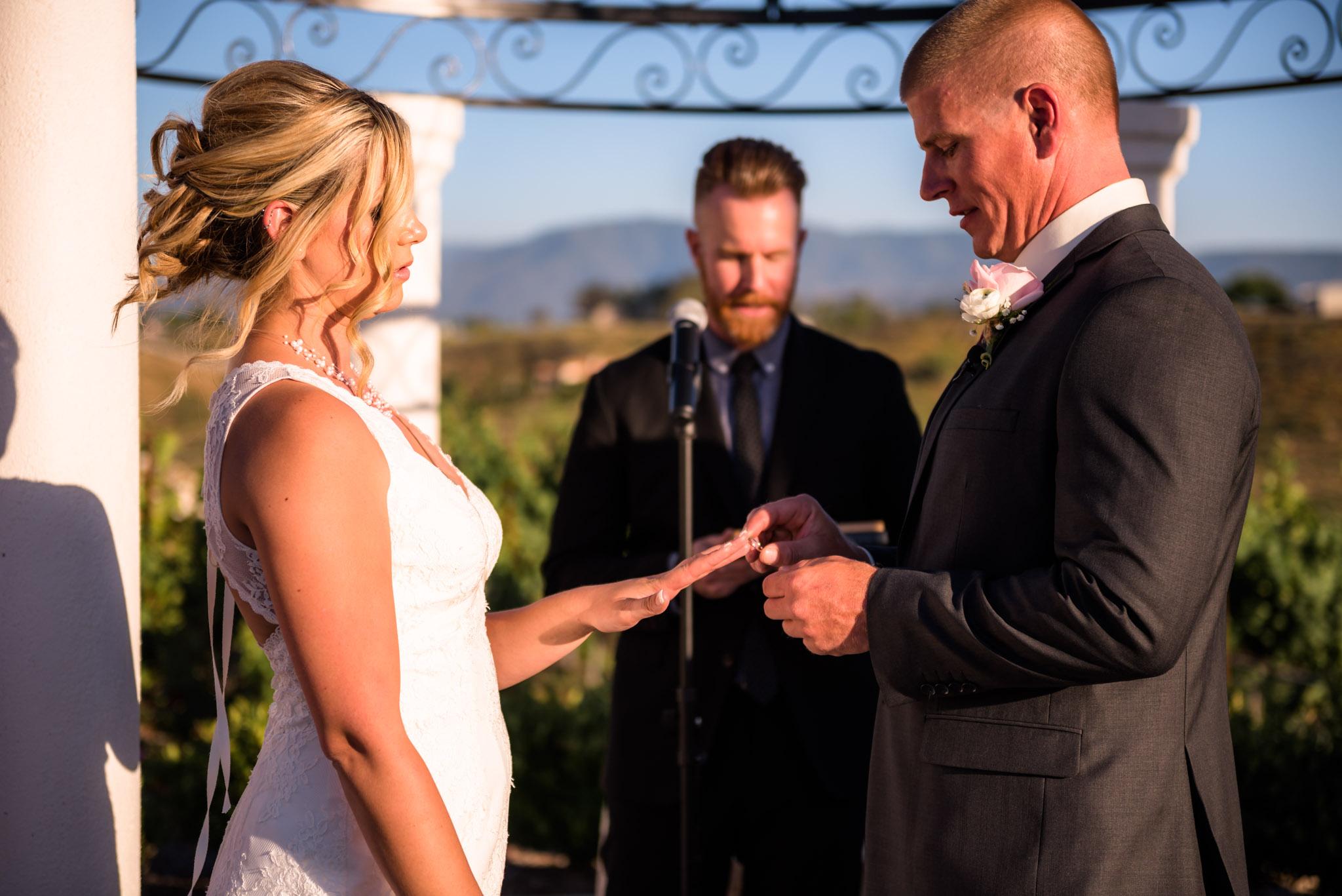 Avensole-Winery-Temecula-Wedding-Josh-and-Olivia-3590.JPG