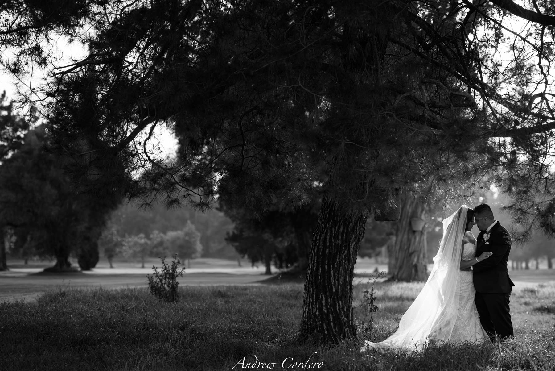 canyon-crest-country-club-riverside-wedding-jose-and-espie-4870.JPG