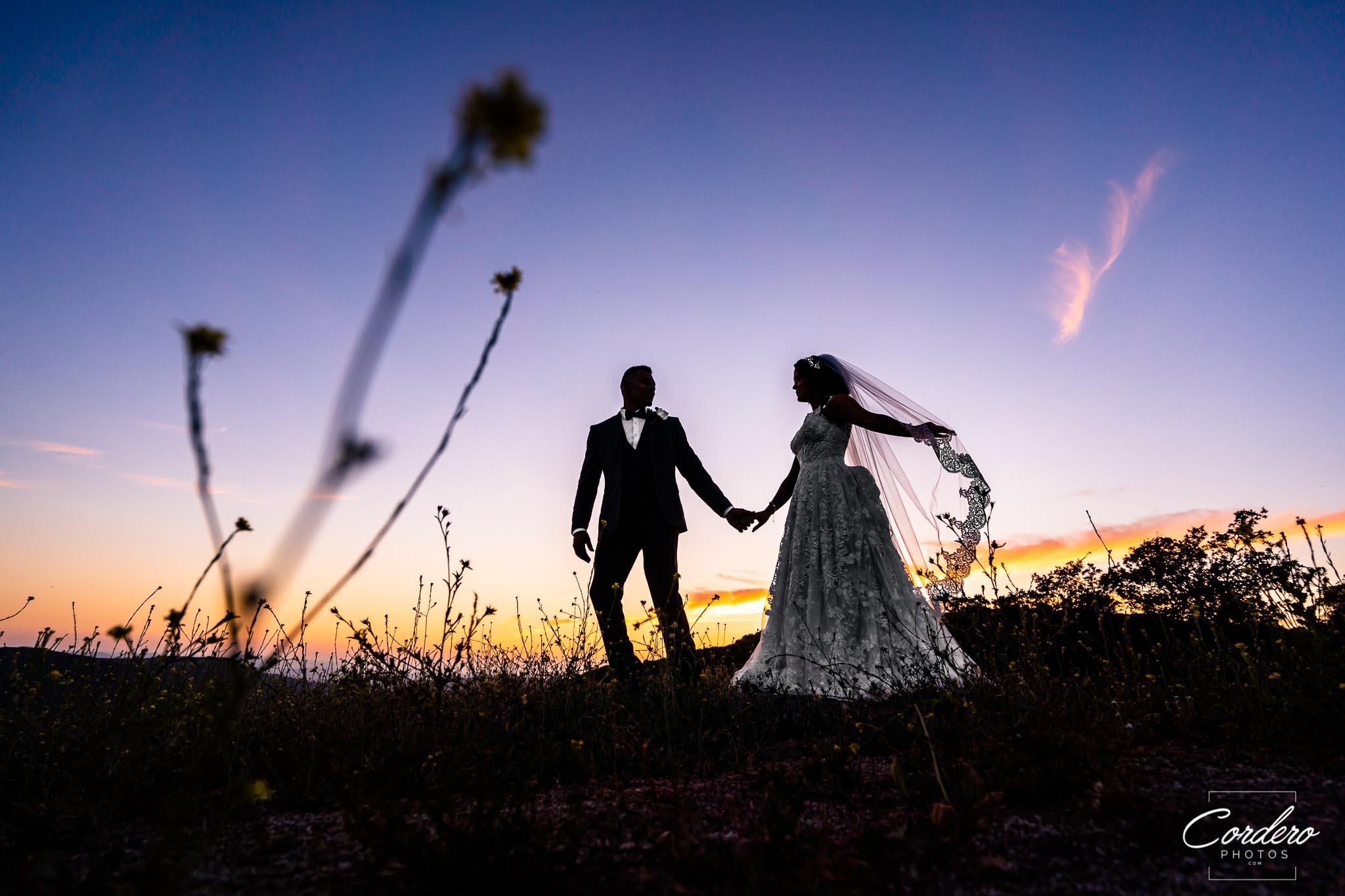 Anthony-and-Ashley-Wedding-WEB-01183.jpg