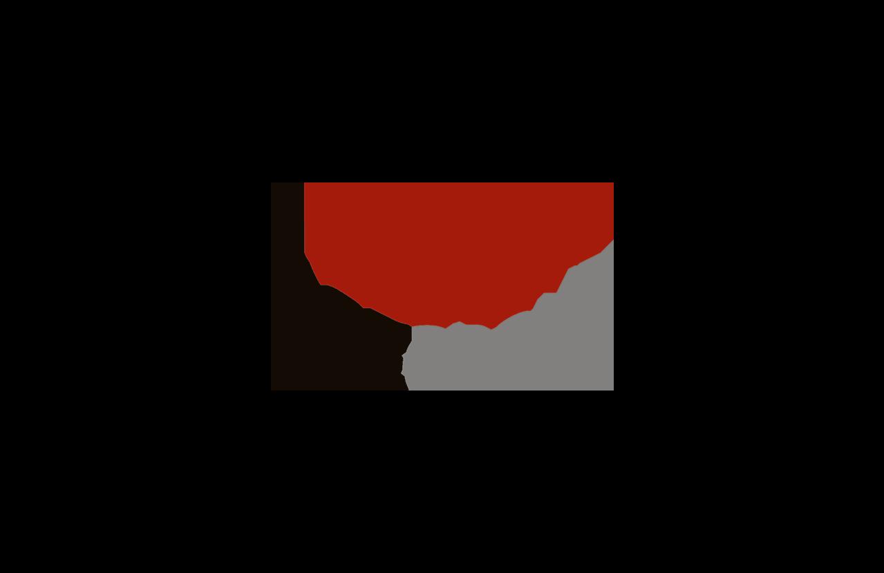 Ace Logo for website.png