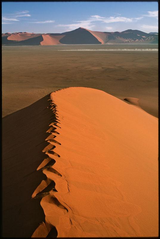 855-01768-02-Dune-51-High-#2-NEW-2010.jpg
