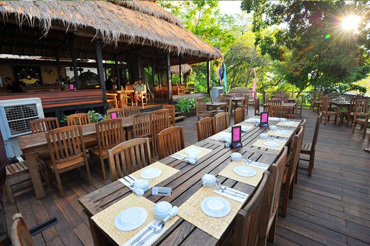 tree-monkey-restaurant.jpg