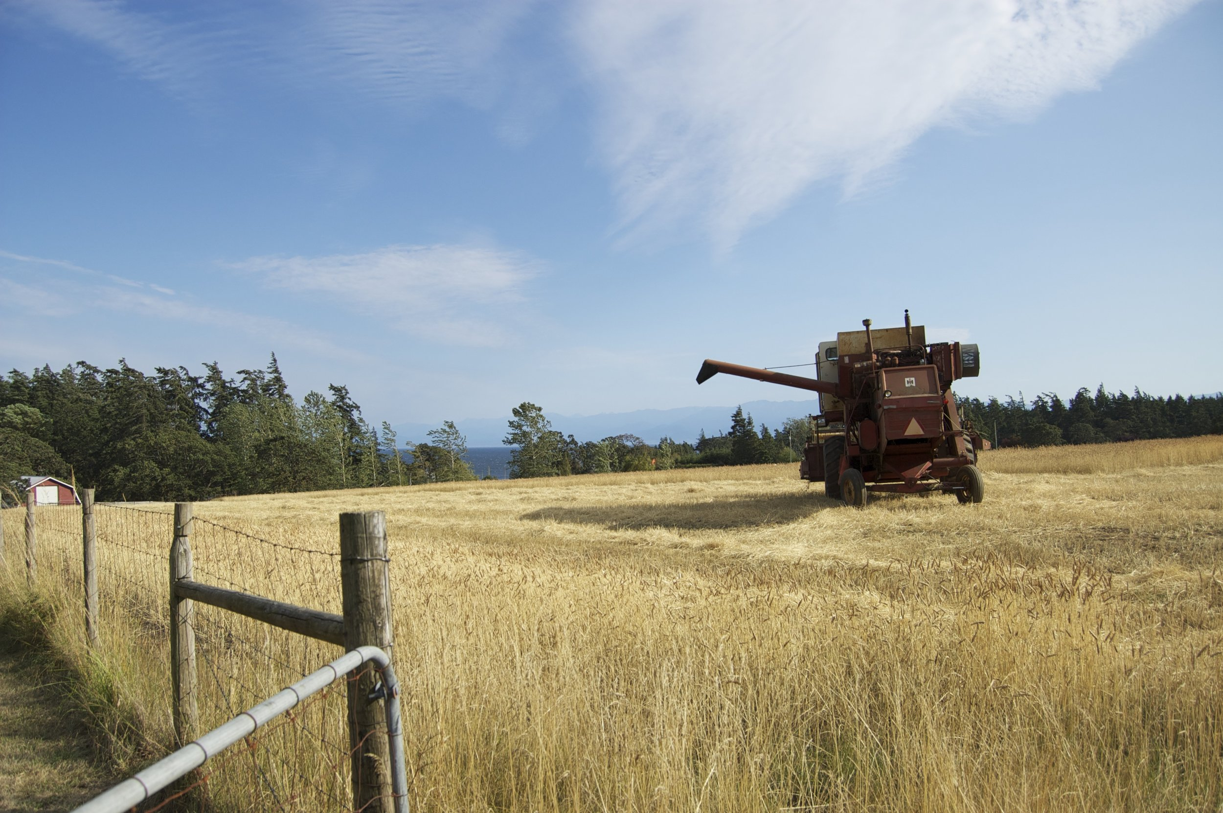 Stillmeadow Farm