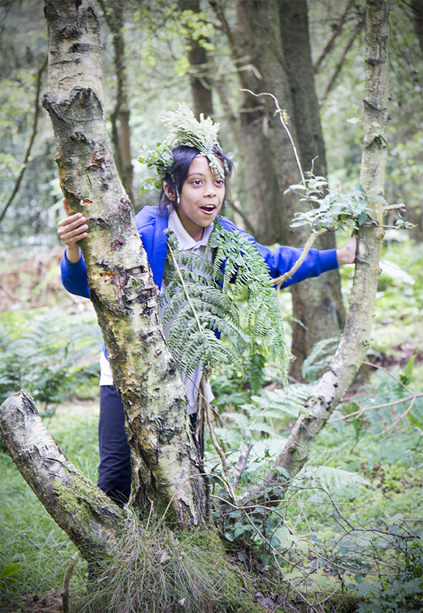 woods 22.jpg