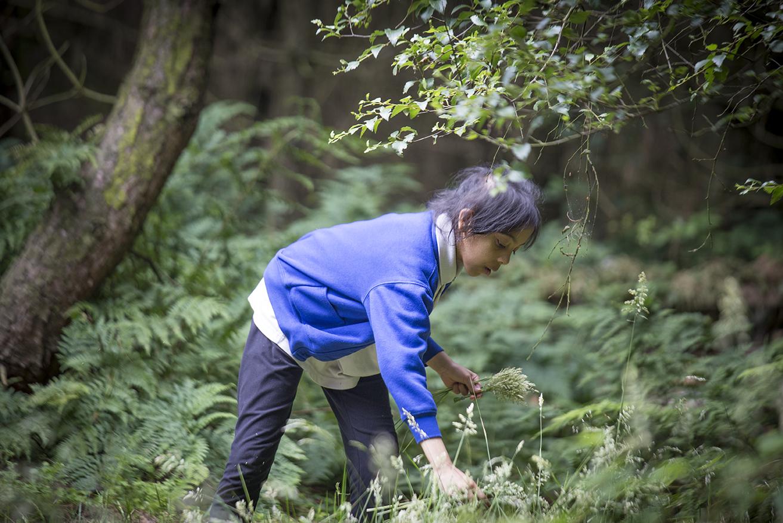 Woods 4.jpg
