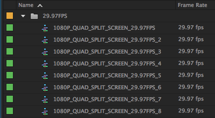 29.97 FPS Templates