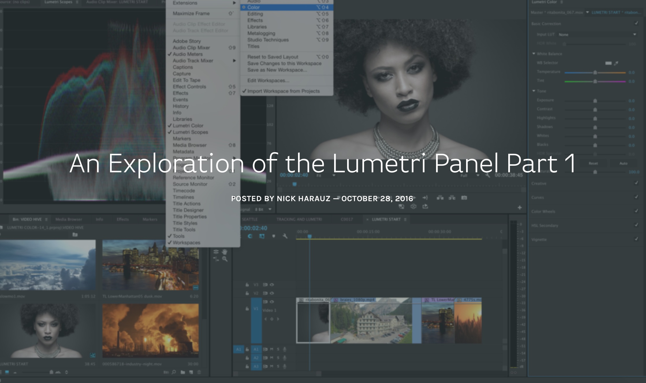 Screenlight-An-Exploration-of-the-Lumetri-Panel-Part-1-Nick-Harauz.png