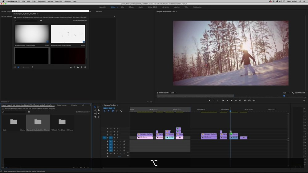 Rampant Design: Instantly Add Style to Your Edit with FREE Film