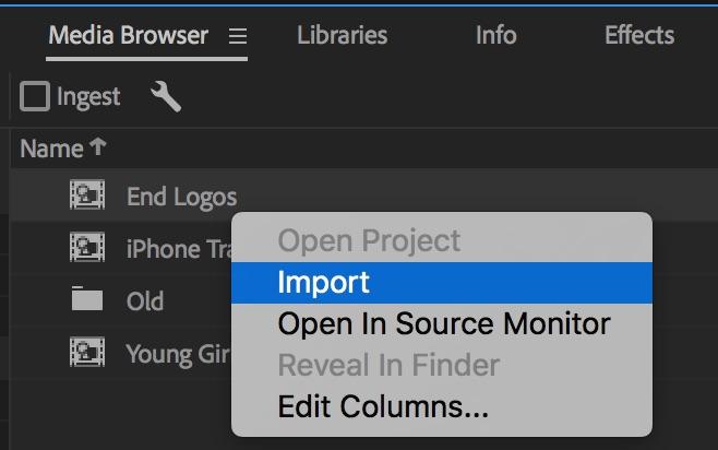 import-media-browser-premiere-pro.jpeg