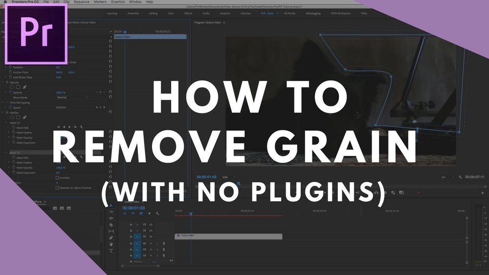Video School Online: Reduce Grain in Premiere Pro with No Plugins