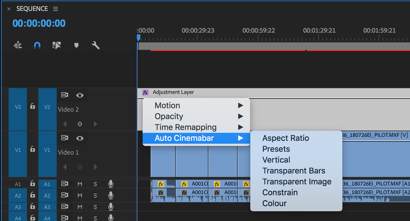 Apple Auto Cinemabar to an Adjustment layer above your edit