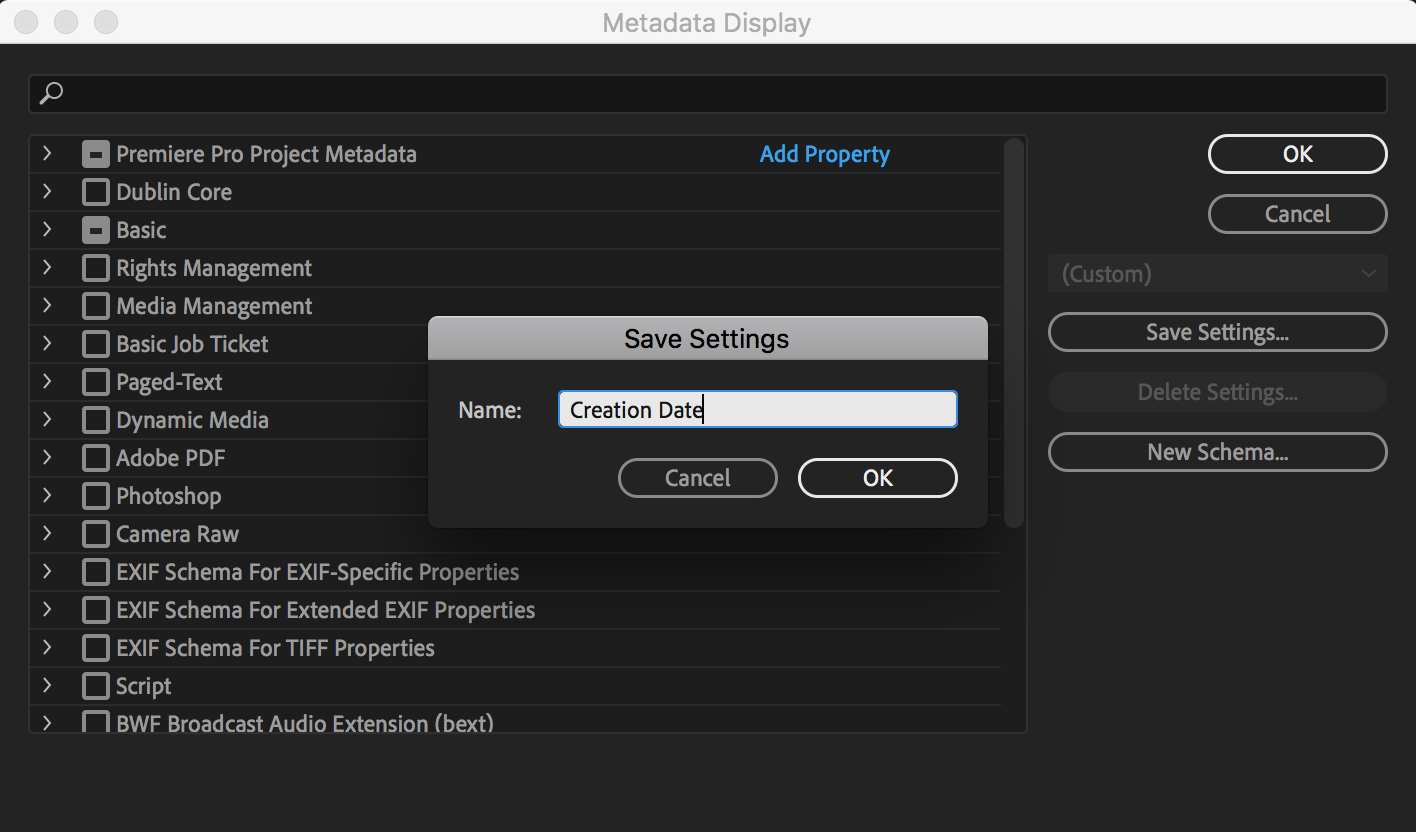 save-metadata-settings-premiere-pro-1.png