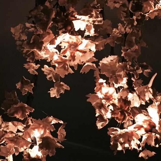 Light_sculputure.Madison.JPG