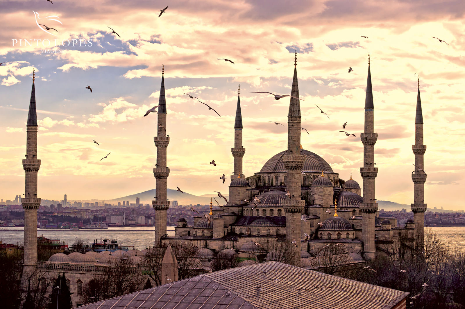Turquia</a>