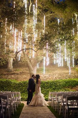 Tree Lighting.jpeg