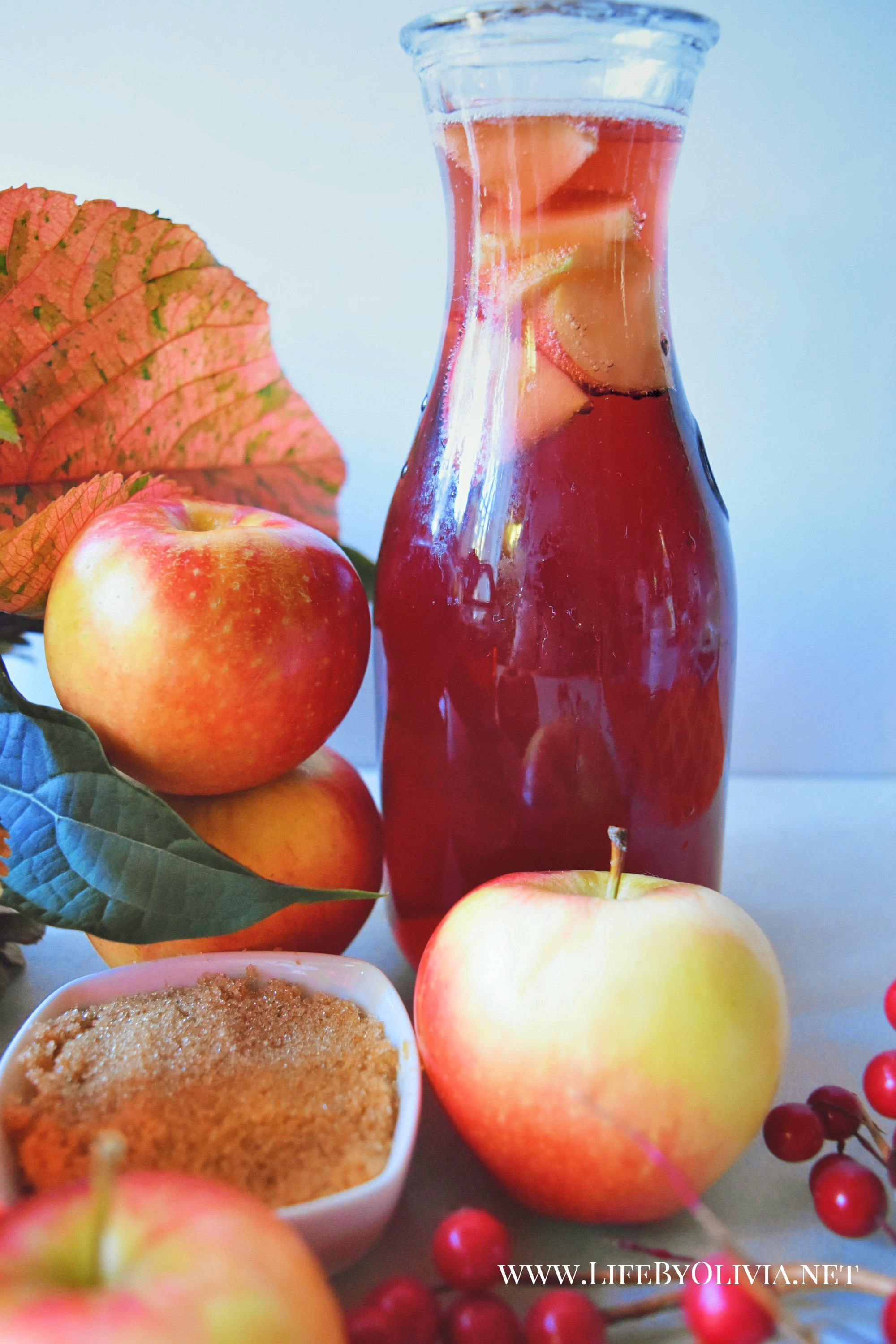 Apple Pie Sangria 2.jpg