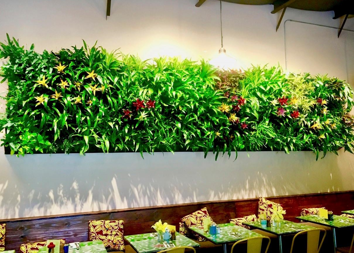 Living Walls & Green Roofs