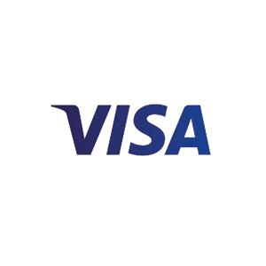 visa_incompany.jpg