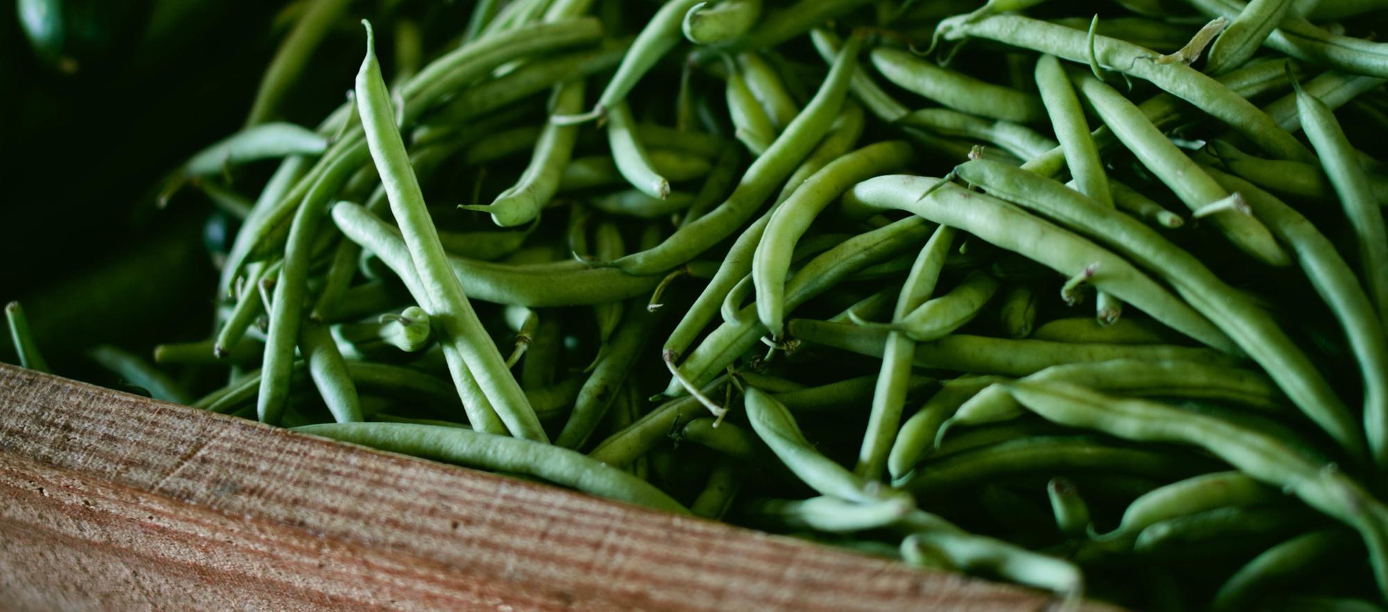 Greenbeans_SSMblogs.jpg