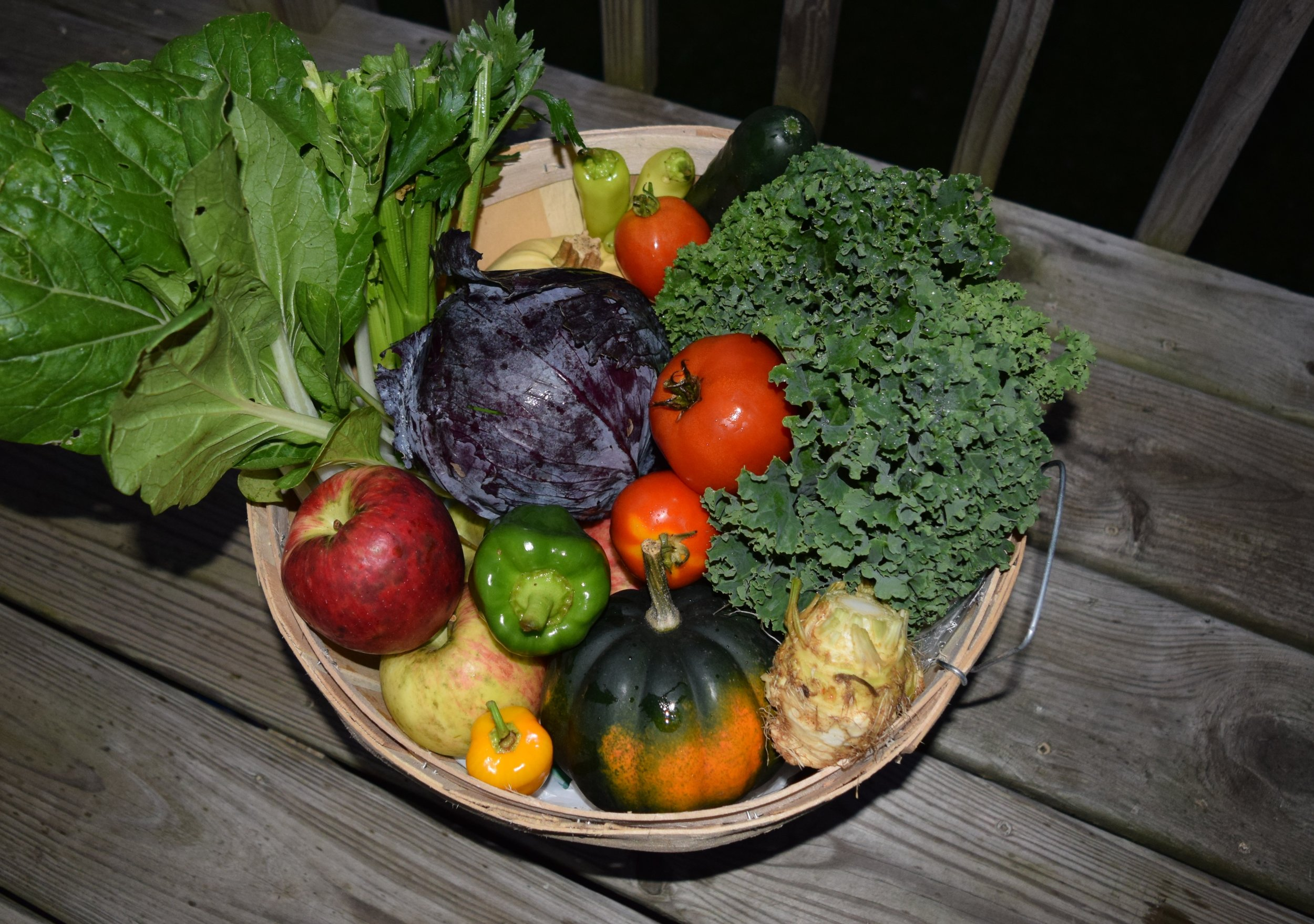 sample of weekly csa share box contents