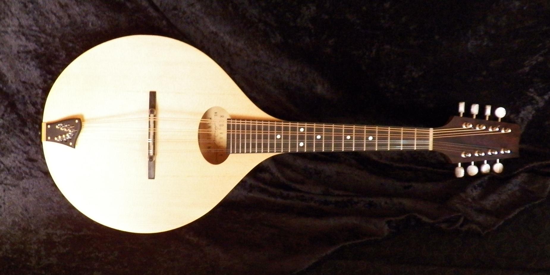 EM mandolin 100_0071.JPG