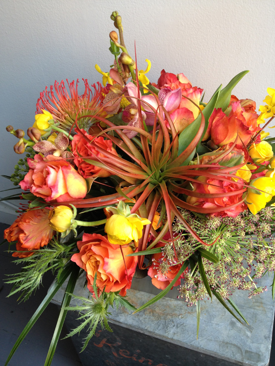 Airplant-Protea-Arrangement-Sullivan-Owen