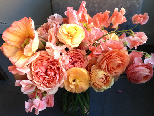 Sullivan-Owen-Floral-Design-Philadelphia-Coral-Ranunculus-Poppy-Rose