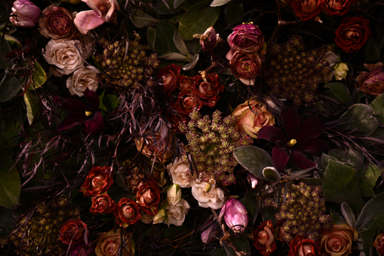 Sullivan-Owen-Philadelphia-Flower-Show-2013-Mauve-Plum