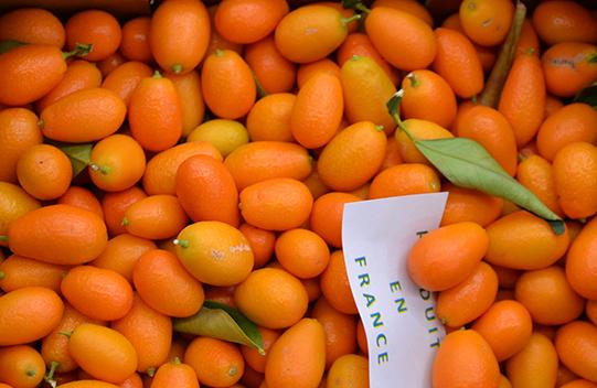 Sullivan-Owen-Rungis-Market-Citrus