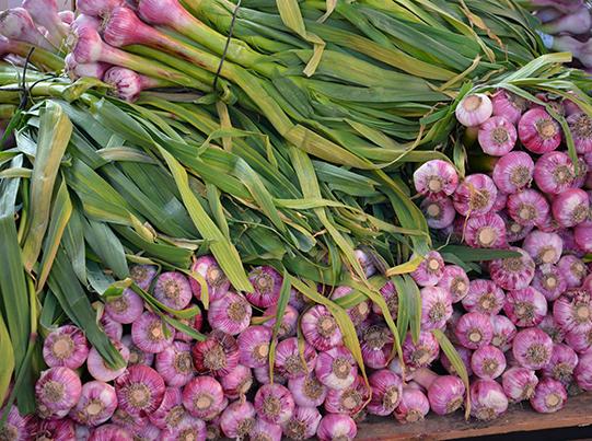 Sullivan-Owen-Rungis-Market-Produce-2