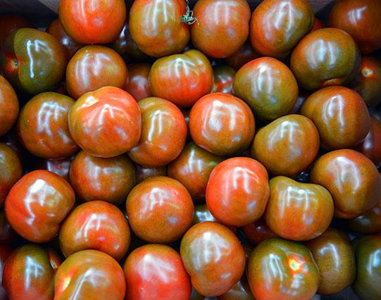 Sullivan-Owen-Rungis-Market-Tomato