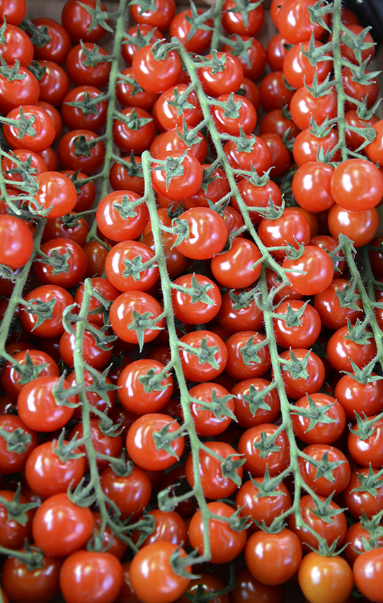 Sullivan-Owen-Rungis-Market-TomatoVine