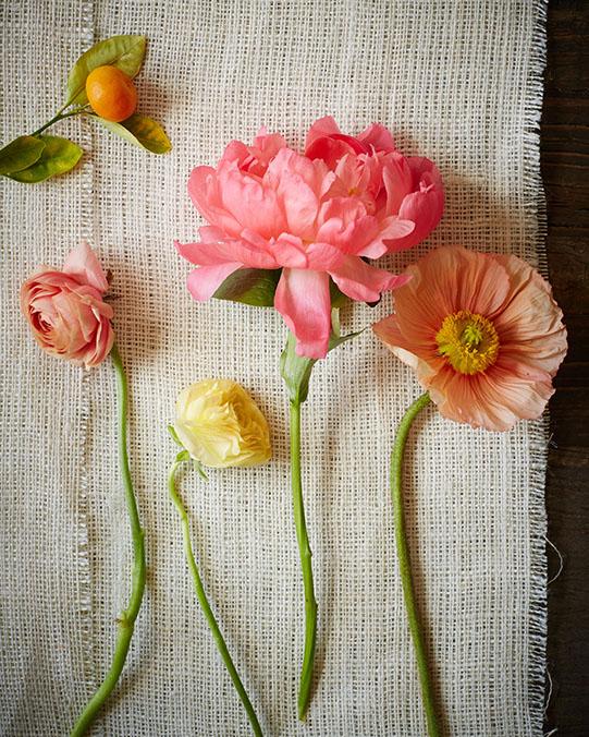 Sullivan-Owen-for-BHLDN-FlowerGuide-1